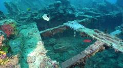 Ocean scenery World War II, WW2 Japanese freighter, on wreckage, HD, UP26927 Stock Footage