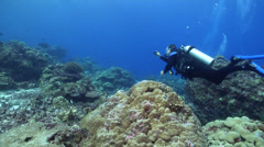 Point and shoot photographer swimming on shallow coral reef in Solomon Islands, Stock Footage