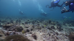 Distant scuba diver on shallow coral reef in Solomon Islands, HD, UP27259 Stock Footage