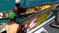 Local fisherman gutting fish in his dugout canoe, HD, UP27457 Stock Footage
