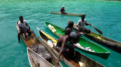 Local fisherman in dugout canoes, HD, UP27458 Stock Footage