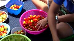 Dive boat manager buying produce from local villagers, dugout canoe market, Stock Footage