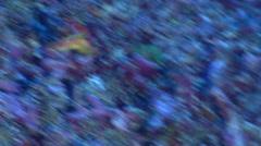 Fairy wrasse flashing colours on rubble, Paracheilinus rubricaudalis, HD, Stock Footage