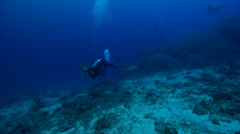 Diver focused on primary critter taking images on deep coral reef with Green Stock Footage