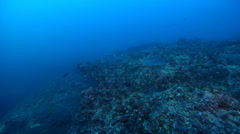 Ocean scenery returning to ship with diver recall banging, fairly barren rocks Stock Footage