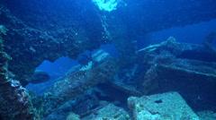 Ocean scenery on wreckage, HD, UP31652 Stock Footage