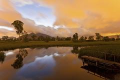 Sunrise pond at wetland - stock photo