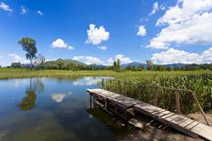 Wetland pond at blue sky in Hong Kong - stock photo