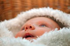 Closeup baby nose in fur clothes Stock Photos