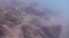 Ocean scenery slow swimover across silty rock wall, up to surface and doggie - stock footage