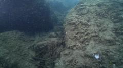 Retrieving line with one hand while filming with the other, underwater, Stock Footage