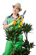 Woman gardener trimming plans on white - stock photo