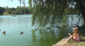 Child Feeding Ducks from Edge Lake, Water, Little Girl Playing in Park, Children HD Footage