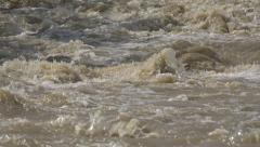 Stock Video Footage of Mountain Muddy River in Flood, Flooding by Rain, Storm, Dam, Flooded, Calamity