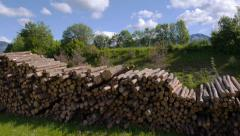 AERIAL: Large pile of timber logs in sunny spring Stock Footage