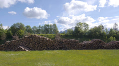 AERIAL: Large stack of logs in meadow Stock Footage