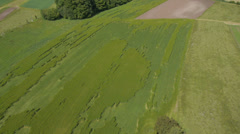 AERIAL: Wheat field damage Stock Footage
