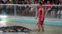 Extreme crocodile show in Pattaya, Thailand Stock Footage