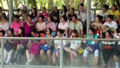 Multiethnic spectators at crocodile show in Pattaya, Thailand Stock Footage