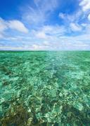Coral scape at andaman sea Thailand Stock Photos