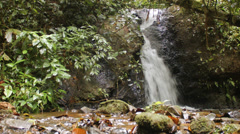 Tropical rainforest waterfall Stock Footage