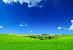 Stock Photo of green field and blue sky