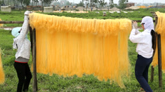 Women drying sheets of Mien Noodles nr Hanoi North Vietnam Stock Footage