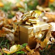 Autumn gift Stock Photos