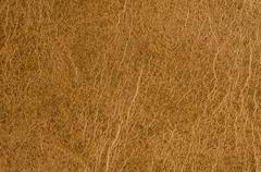 Yellow leather Stock Photos