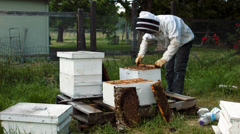 Beekeeper gets cell. treats them. Stock Footage