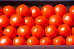 Stock Photo of Red tomatoes