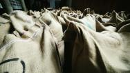Stock Video Footage of Jute sacks of coffee
