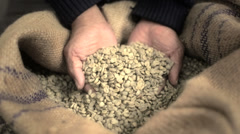 Handful of green coffee beans Stock Footage