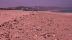 Quiet beach, summer Stock Footage