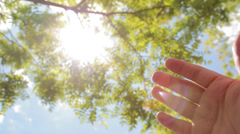 Hand reaching toward sun light through tree leaves Stock Footage