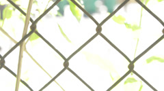 Chain Link Fence - Washed Out Stock Footage