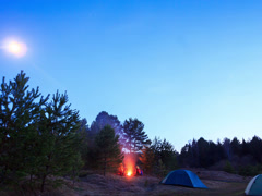 Moonlit night around the campfire. Time Lapse. 4x3 Stock Footage