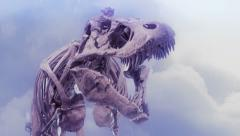 Dinosaur skeleton roaring Stock Footage