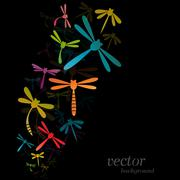 dragonfly design on black background - stock illustration