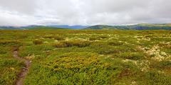 Rondane Norway - stock photo