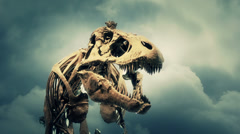 Stock Video Footage of T-rex skeleton roaring