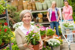 Garden centre senior lady hold potted flower - stock photo
