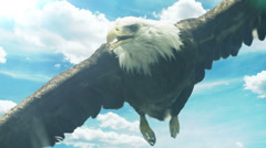 Soaring American Eagle Stock Footage