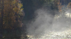 Mists rising from a forest glade in autumn Stock Footage