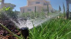 Garden Irrigation Spray POV A Stock Footage