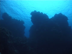 Ocean scenery on unlit hard coral formations, UP2878 Stock Footage