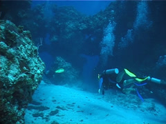 Divemaster leading eager divers on deep coral reef in Mexico, UP2935 Stock Footage