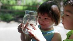 Two Asian Children Look In Wonder At A Bug In A Jar - stock footage