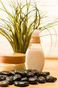 Spa green plant with cosmetic products stones Stock Photos