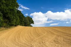 plowed field at the end of summer - stock photo
